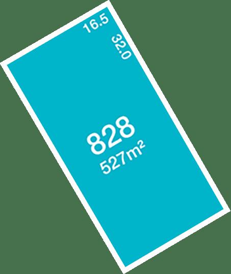 Lot 828